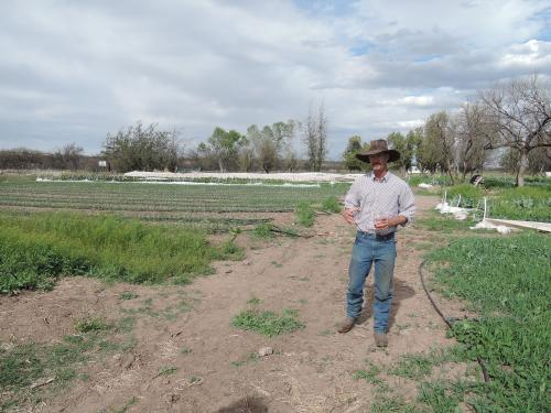 Jim, owner of the Walking J, gives me a tour of his organic farm